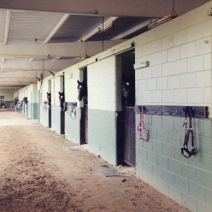 Frontside of Stalls